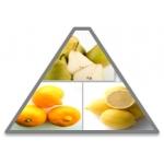 Ольфакторная пирамида