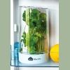 Контейнер для хранения зелени Faberlic (Фаберлик)